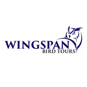 Wingspan Bird Tours - A client of Ziontech Solutions, Yeovil, Somerset